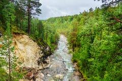 Άποψη σχετικά με τον ποταμό Kyngyrga Arshan Ρωσία Στοκ Εικόνες