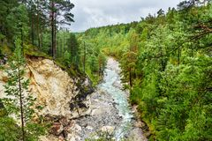 Άποψη σχετικά με τον ποταμό Kyngyrga Arshan Ρωσία Στοκ φωτογραφίες με δικαίωμα ελεύθερης χρήσης