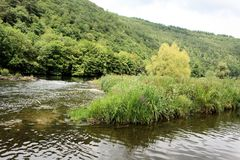 Άποψη σχετικά με τον ποταμό Semois, βελγικές Αρδέννες Στοκ φωτογραφία με δικαίωμα ελεύθερης χρήσης