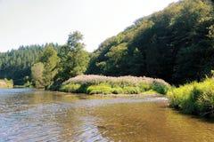 Άποψη σχετικά με τον ποταμό Semois, βελγικές Αρδέννες Στοκ εικόνα με δικαίωμα ελεύθερης χρήσης