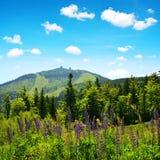 Άποψη σχετικά με το βουνό Grosser Arber στο εθνικό βαυαρικό δάσος πάρκων, Γερμανία Στοκ φωτογραφία με δικαίωμα ελεύθερης χρήσης