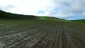 Άποψη σχετικά με το λερωμένο τομέα φυτειών άνωθεν απόθεμα βίντεο