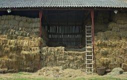Άποψη σχετικά με το σύνολο σιταποθηκών του ξηρού αχύρου στοκ φωτογραφία με δικαίωμα ελεύθερης χρήσης