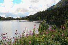 Άποψη της λίμνης βουνών Popradske Pleso- παγετώδους προέλευσης στο υψηλό Tatras, Σλοβακία Στοκ Εικόνες
