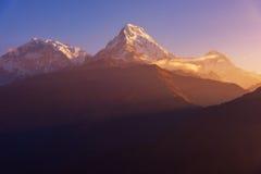 Άποψη της αιχμής Annapurna στην ανατολή από Poonhill, Νεπάλ Στοκ Φωτογραφίες