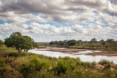 Άποψη της αφρικανικής σαβάνας Στοκ Εικόνες