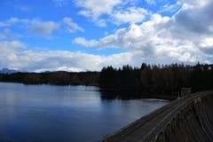 Άποψη της βλασφημίας πέρα από το τοπίο πεύκο-δέντρων Στοκ φωτογραφία με δικαίωμα ελεύθερης χρήσης