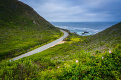Άποψη της εθνικής οδού Ειρηνικών Ωκεανών και Pacific Coast, σε Garrap Στοκ φωτογραφία με δικαίωμα ελεύθερης χρήσης