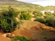 Άποψη της επαρχία-algarinejo-Ανδαλουσίας Στοκ Εικόνες