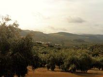 Άποψη της επαρχία-algarinejo-Ανδαλουσίας Στοκ Φωτογραφία