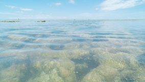 Άποψη της θάλασσας και των κοραλλιών υποβρύχιων