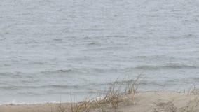 Άποψη της θάλασσας και των κυμάτων στο νεφελώδη καιρό, ευρύς πυροβολισμός γωνίας φιλμ μικρού μήκους