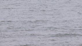 Άποψη της θάλασσας και των κυμάτων στο νεφελώδη καιρό, ευρύς πυροβολισμός γωνίας απόθεμα βίντεο