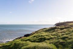 Άποψη της ιρλανδικής θάλασσας και των πράσινων χλοωδών παράκτιων απότομων βράχων Στοκ φωτογραφία με δικαίωμα ελεύθερης χρήσης