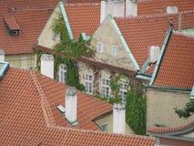 Άποψη της ιστορικής πόλης Πράγα, των συμπαθητικών παλαιών ορόσημων και των κτηρίων, των στεγών και των πύργων Czech παπάδων, Ευρώ στοκ φωτογραφία
