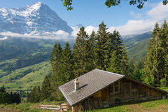 Άποψη της κοιλάδας Grindelwald, Ελβετία Στοκ Εικόνα