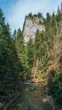Άποψη της κοιλάδας Koscielisko σε πολωνικό Tatras Στοκ εικόνα με δικαίωμα ελεύθερης χρήσης