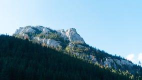 Άποψη της κοιλάδας Koscielisko σε πολωνικό Tatras Στοκ εικόνες με δικαίωμα ελεύθερης χρήσης
