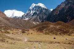 Άποψη της κοιλάδας Langtang, εθνικό πάρκο Langtang, Rasuwa Dsitrict, Νεπάλ στοκ εικόνες