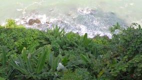 Άποψη της κυματωγής από τους χλοώδεις απότομους βράχους απόθεμα βίντεο