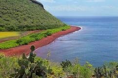 Άποψη της κόκκινων παραλίας και της λιμνοθάλασσας του νησιού Rabida Galapagos Natio Στοκ εικόνα με δικαίωμα ελεύθερης χρήσης