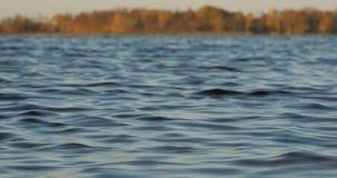Άποψη της λίμνης και των κυμάτων από τη χαμηλή ακτή απόθεμα βίντεο