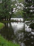 Άποψη της λίμνης μέσω των δέντρων με τα βήματα που ποτίζουν στο ανάχωμα τις νεφελώδεις ημέρες στοκ φωτογραφία με δικαίωμα ελεύθερης χρήσης
