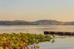 Άποψη της λίμνης του viverone στην Ιταλία με την αποβάθρα για την πρόσδεση στοκ φωτογραφία