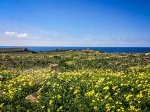 Άποψη της Μάλτας στοκ φωτογραφία με δικαίωμα ελεύθερης χρήσης