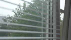 Άποψη της οδού κατά τη διάρκεια της βροχής μέσω των τυφλών στο παράθυρο r φιλμ μικρού μήκους