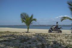 Άποψη της παραλίας με το οδηγώντας ποδήλατο τετραγώνων φοινίκων και ατόμων, του ωκεανού και του Λουάντα ως υπόβαθρο, νησί Mussulo στοκ εικόνες με δικαίωμα ελεύθερης χρήσης