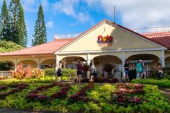 Άποψη της φυτείας ανανά επιδομάτων ανεργίας σε Wahiawa, προορισμός γύρου στοκ φωτογραφία με δικαίωμα ελεύθερης χρήσης