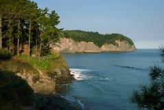 Άποψη της ωκεάνιας ακτής, παραλία, δάσος, απότομος βράχος, Ισπανία, Ispast Στοκ Φωτογραφία