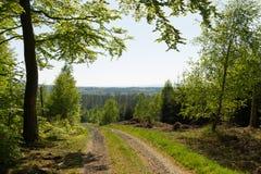 Άποψη της Misty από το dirtroad Στοκ φωτογραφία με δικαίωμα ελεύθερης χρήσης