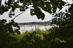 Άποψη τιτιβίσματος του κόμματος λιμνών στο φράγμα άμμου σε εκβολή ποταμού στοκ εικόνα