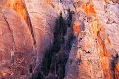 Άποψη τοπίων λεπτομέρειας των τοίχων βουνών στο εθνικό πάρκο Zion, Γιούτα Στοκ εικόνες με δικαίωμα ελεύθερης χρήσης