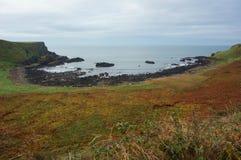 Άποψη τοπίων του Giant& x27 υπερυψωμένο μονοπάτι του s, Βόρεια Ιρλανδία Στοκ εικόνα με δικαίωμα ελεύθερης χρήσης