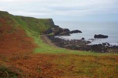 Άποψη τοπίων του Giant& x27 υπερυψωμένο μονοπάτι του s, Βόρεια Ιρλανδία Στοκ φωτογραφίες με δικαίωμα ελεύθερης χρήσης