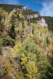 Άποψη τοπίων των βουνών και του φυλλώματος πτώσης κοντά στη Aspen, Κολοράντο στοκ εικόνες