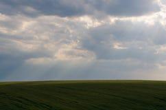 Άποψη τοπίων των πράσινων τομέων και των σύννεφων στο θερινή περίοδο Στοκ εικόνα με δικαίωμα ελεύθερης χρήσης