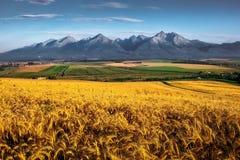 Άποψη τοπίων των υψηλών βουνών Tatras στην ανατολή, Σλοβακία στοκ φωτογραφίες