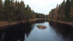 Άποψη του δάσους και του ποταμού φθινοπώρου φιλμ μικρού μήκους
