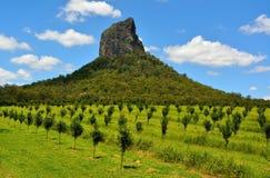 Άποψη του βουνού Coonowrin στην περιοχή βουνών σπιτιών γυαλιού σε Qu στοκ εικόνα