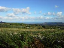 Άποψη του γκαρίσματος από Glencree Στοκ φωτογραφίες με δικαίωμα ελεύθερης χρήσης