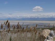 Άποψη του Γκρέιτ Σωλτ Λέηκ, nr λίμνη αλατισμένο Utah πόλεων Στοκ εικόνα με δικαίωμα ελεύθερης χρήσης