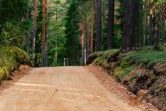 Άποψη του δασικού δρόμου, τίτλος βαθύτερος στα ξύλα στοκ φωτογραφίες με δικαίωμα ελεύθερης χρήσης
