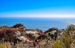 Άποψη του Ειρηνικού από το λιμένα ανεμοπλάνων πεύκων Torrey στο Σαν Ντιέγκο Στοκ φωτογραφία με δικαίωμα ελεύθερης χρήσης
