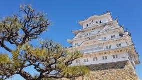 Άποψη του κάστρου του Himeji, Ιαπωνία απόθεμα βίντεο