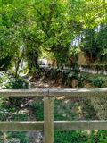 Άποψη του καναλιού του φυσικού τοπίου του Λα Floresta στοκ εικόνες