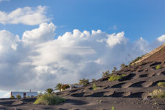 Άποψη του Λα Geria, η περιοχή αμπελοκαλλιέργειας Lanzarote, Ισπανία Στοκ Εικόνες